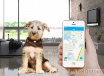 PET GPS Tracker для питомцев